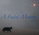 A Faded Memory