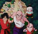 Dragon Ball épisode 132