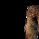 J Legs03.png
