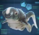 Golby Face!/Cuddle Fish needs new data bank entry.