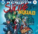Suicide Squad Vol.5 1