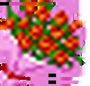 100 Rose RF2.png