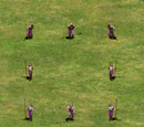 Infantería de Age of Empires Online