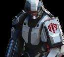 ADVENT Shieldbearer