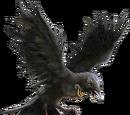 Raven (Laguz)