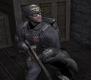 Чёрные стражи
