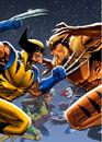 X-men Animated Vol 4 Box Art.jpg