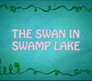 The Swan in Swamp Lake
