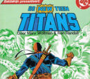 De New Teen Titans 17