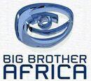 Big Brother Africa 4 (David34)