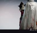Hardcase Cloak (Legendary)