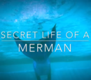 Secret Life of a Merman (su life of a merman)