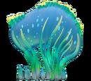 Морской венец