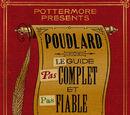 Poudlard : Le Guide Pas complet et Pas fiable du tout