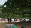 Camelot Camp