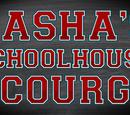 Sasha's Schoolhouse Scourge