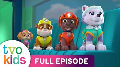 PAW PATROL - All Star Pups - Full Episode