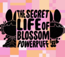 The Secret Life of Blossom Powerpuff