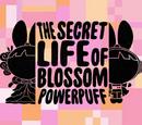 The Secret Life of Blossom Powerpuff