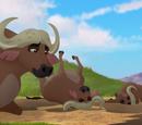 The Royal Buffalo Wallow