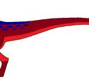 Raptor Jr.