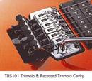 TRS-101