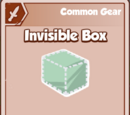 Invisible Box