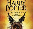 Universo Harry Potter