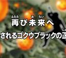 Episodio 60 (Dragon Ball Super)