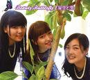 Beauty Butterfly / Hoshizora to Kumo