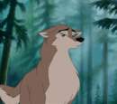 Aleu's New Alpha Male