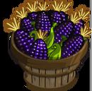 Black Aztec Corn Bushel-icon.png
