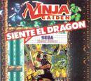 Ninja Gaiden Master System