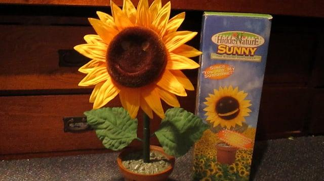 Sunny the Singing Sunflower