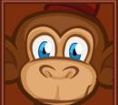 Mister the Monkey