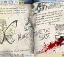 Кошмар Макс/Журнал