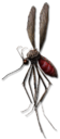 Insect killer.png