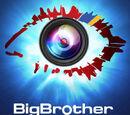 Big Brother Ukraine (franchise)