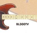 BL300 (1995)