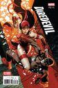 Daredevil Vol 5 13 Divided We Stand Variant.jpg