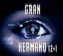 Gran Hermano 13 (Spain)