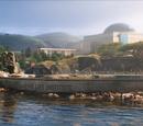 Instituto de Vida Marinha