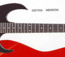 RG360
