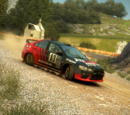 Open Rally (DiRT 3)