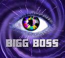 Bigg Boss Kannada 3