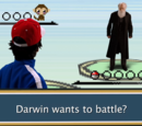 Pokémon Battle Scene