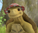 Mr. Tolly Tortoise