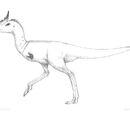 Spec Dinosauria: Laurasiornithopoda