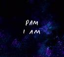 Yo Soy Pam