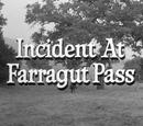 Incident at Farragut Pass